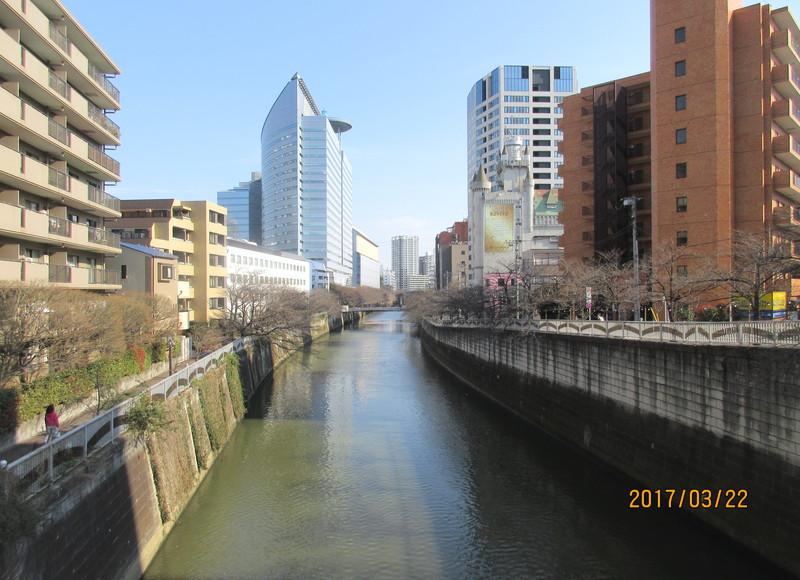 目黒新橋周辺の風景